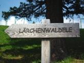 14-Laerchenwaldele